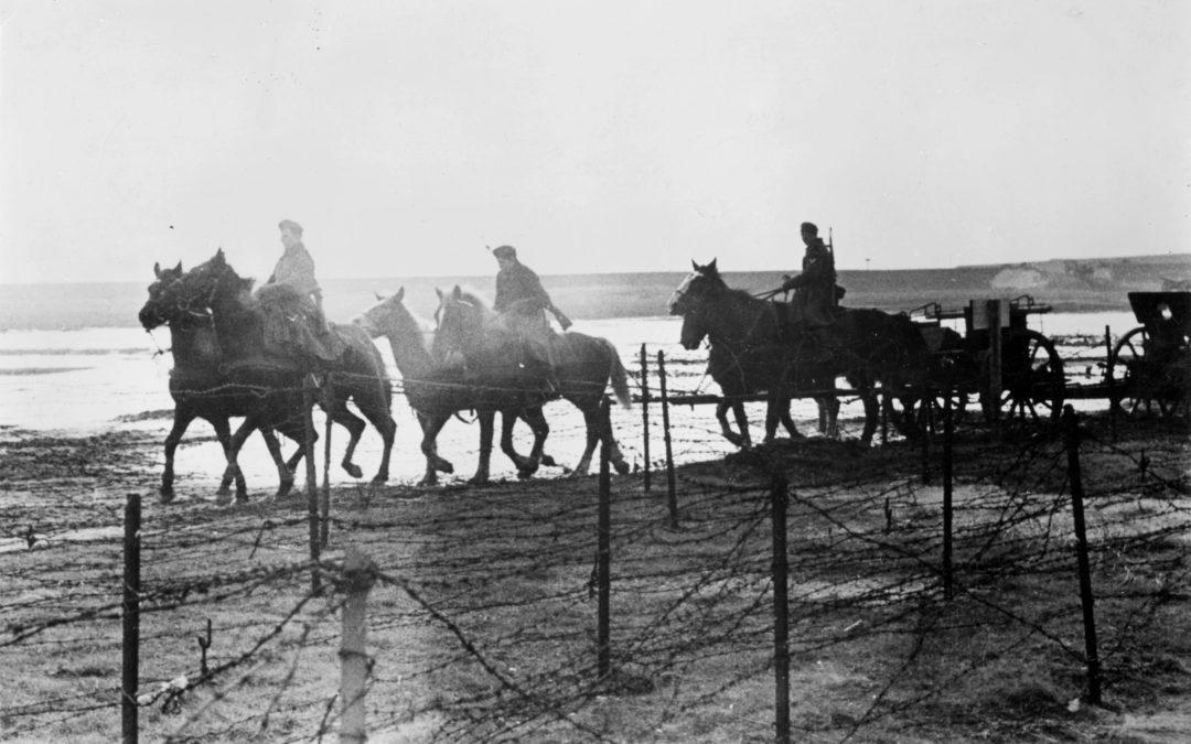 Le cheval, la plus noble conquête du Calvados