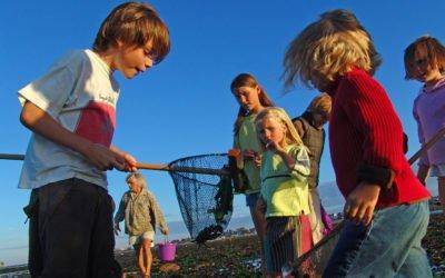 Des sorties Scol'Air pour découvrir le Calvados de la terre à la mer