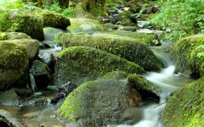 L'eau du département du Calvados à la source