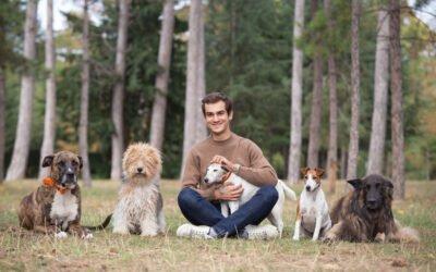 Reglo : des croquettes pour chiens à base de protéines d'insectes