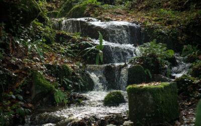 Découvrons les cascades du Pont ès Retours près de Vire